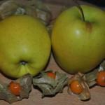 doradas  chutney de manzanas  physalis