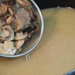 Blanqueta de pollo con setas